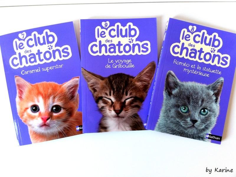 LE CLUB DES CHATONS (Tomes 7, 8 et 9) dans Jeunesse/Enfants photo-19